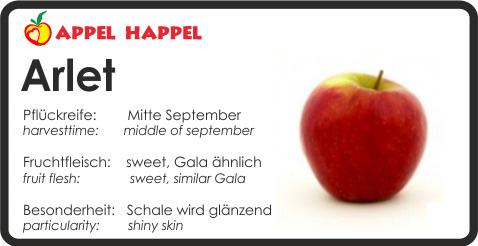 Apfel Arlet - schmeckt süß und ähnlich dem Gala. Pflückreife Mitte September