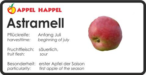 Apfel Astramell - schmeckt säuerlich. Pflückreife Anfang Juli