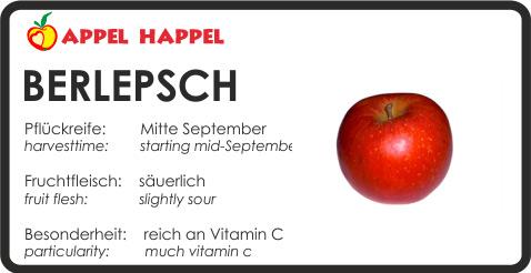 Apfel Berlepsch - schmeckt säuerlich. Pflückreife Mitte September