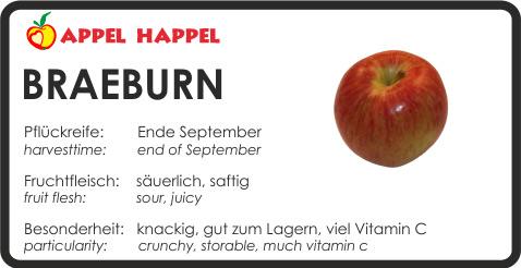 Apfel Braeburn- schmeckt säuerlich und saftig. Pflückreife Ende September