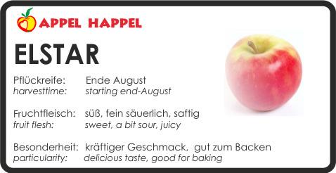 Apfel Elstar - schmeckt süß und fein säuerlich. Pflückreife Ende August