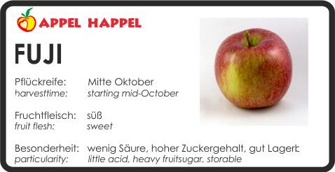 Apfel Jufi - schmeckt süß. Pflückreife Mitte Oktober