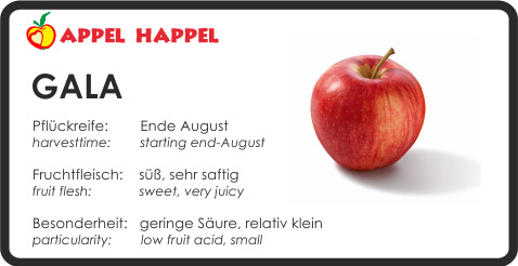 Apfel Gala - schmeckt süß und sehr saftig. Pflückreife Ende August