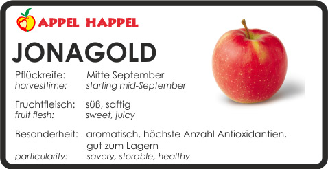 Apfel Jonagold - schmeckt süß und saftig Pflückreife Mitte September