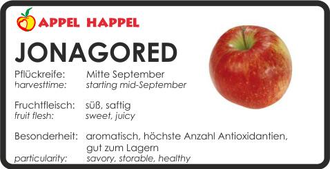 Apfel Jonagored - schmeckt süß und saftig. Pflückreife Mitte September