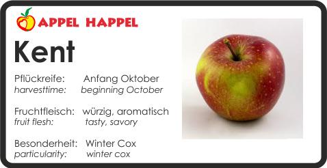 Apfel Kent - schmeckt würzig und aromatisch. Pflückreife Anfang Oktober