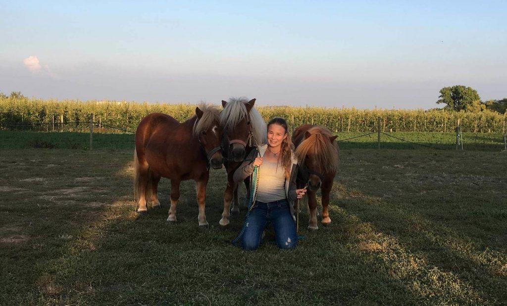 Mädchen mit drei braunen Ponys auf der Wiese des Appel Happel Hofs